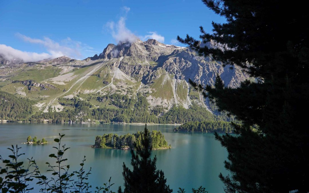 Bike Trail 3-4 Hours Sils Maria and Val Fex